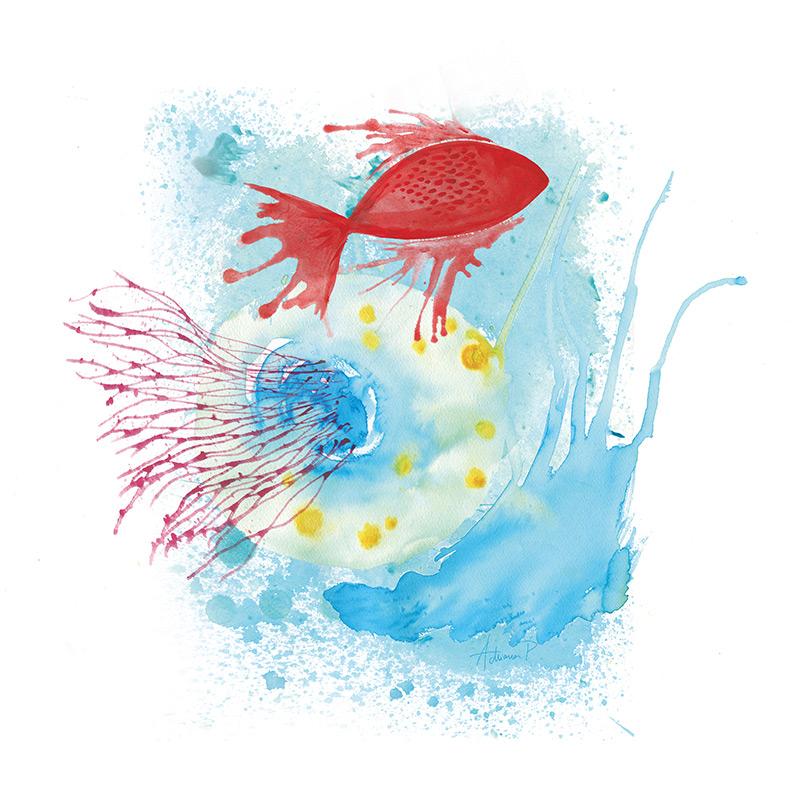 Bico de mar